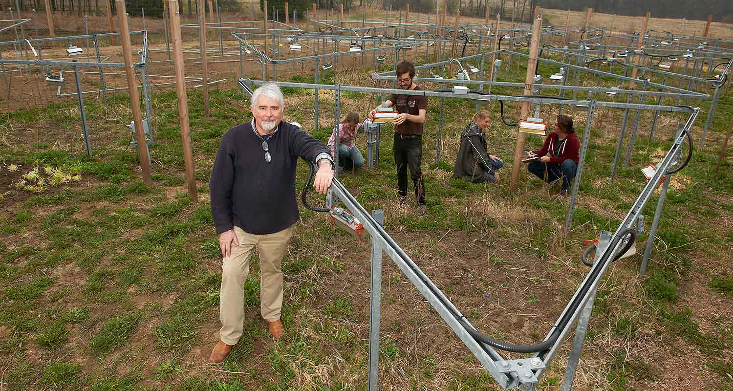 At the Experimental Climate Warming Array, 2012.