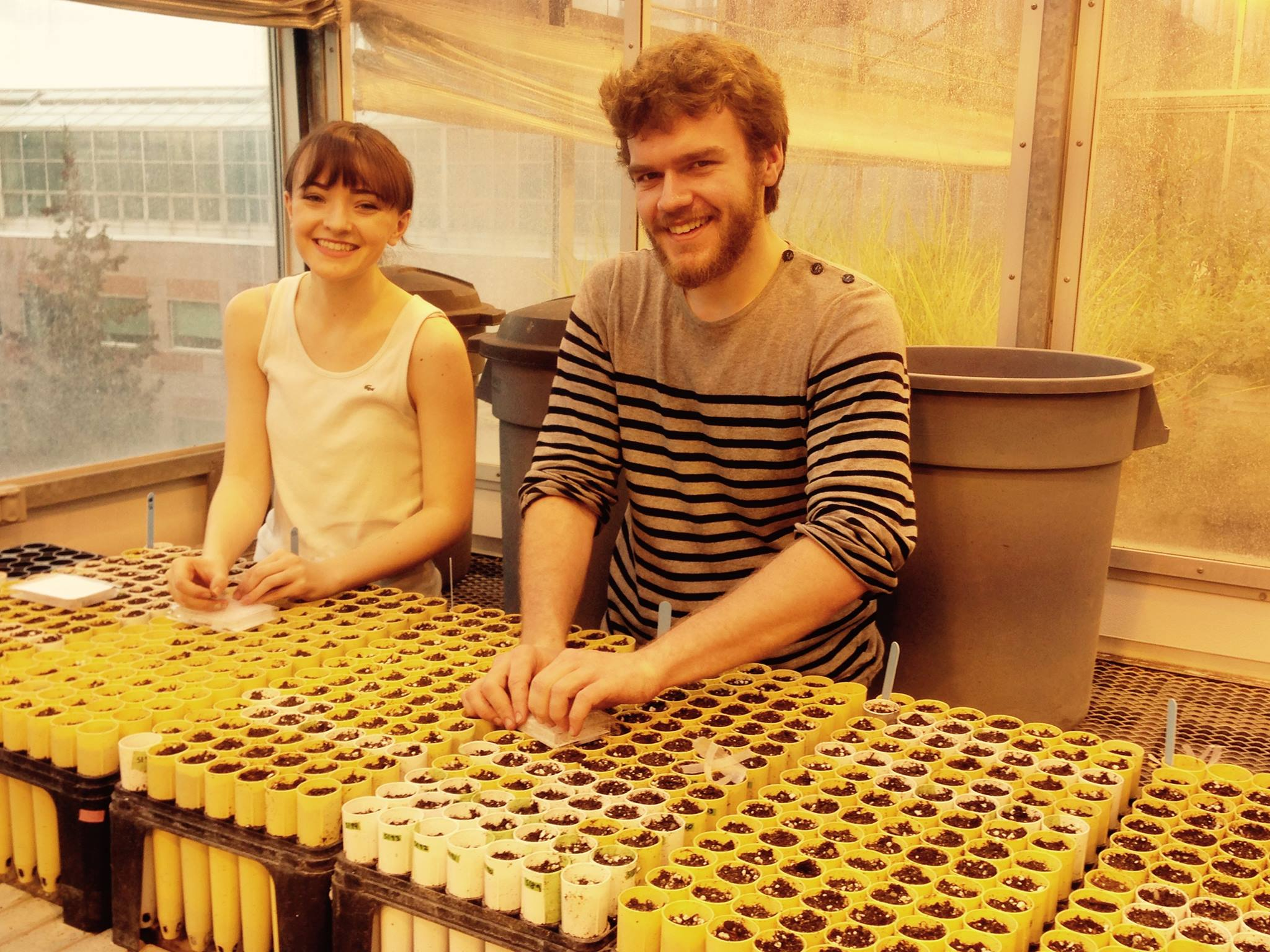 Madeline Peters and Colin Bonner plant generation 2 of Colin's Assisted Gene Flow experiment.